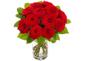 Store røde roser